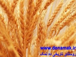 مزرعه عباس آباد