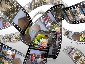 فیلم مناسبت ها
